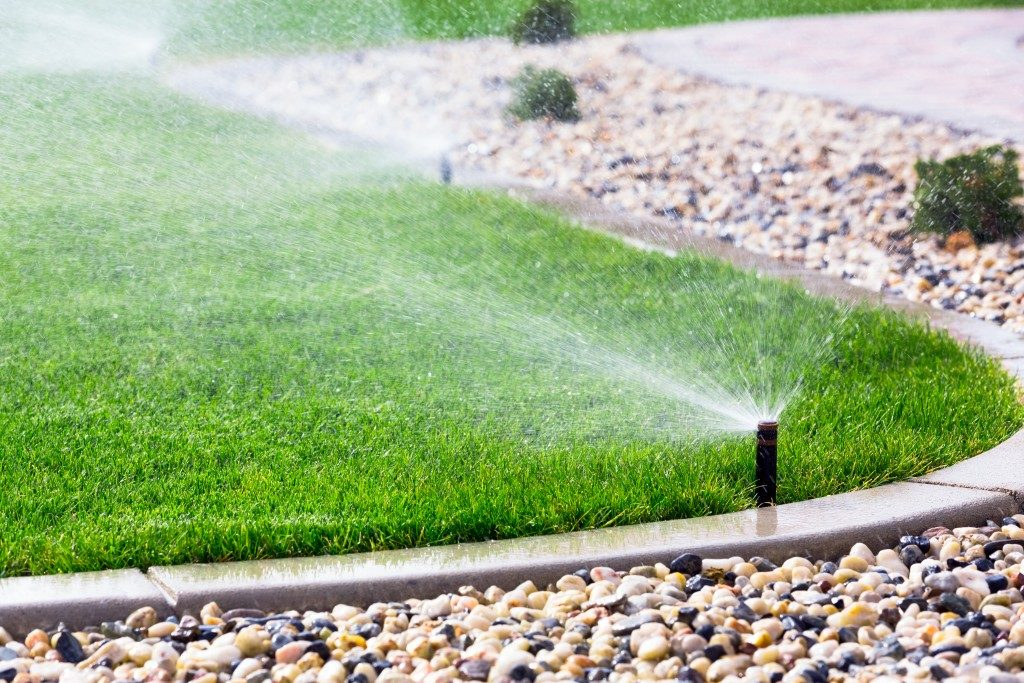Water sprinkler in lawn