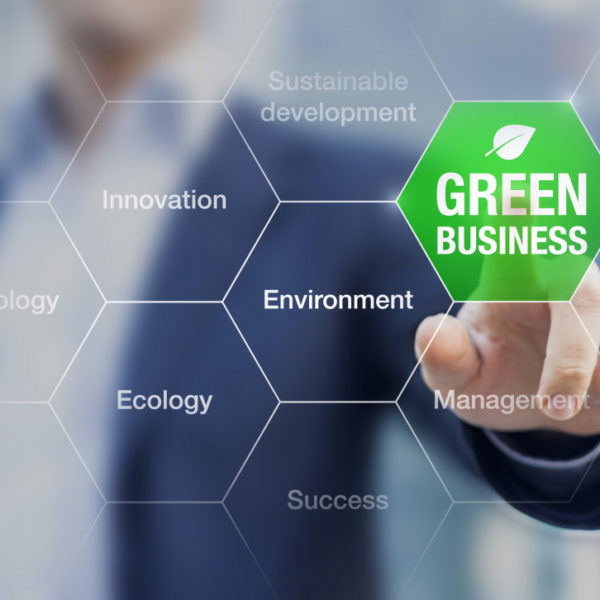 3 Ways Companies Are Growing in Environmental and Social Awareness